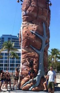 EXT - Rock Wall 25' - 5 Climber Brown +