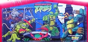 Banner - Ninja Turtles #01