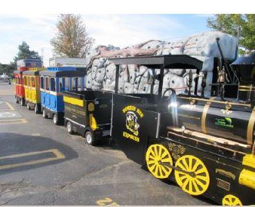CAR - Bumble Bee Express Electric Train #01