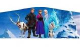 Banner - Frozen #01